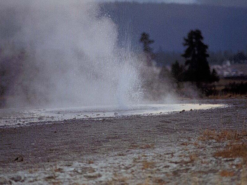 in short about geysers essay Old faithful, a geyser, erupts every 92 minutes on average old faithful geyser these fun facts about yellowstone national park can be found on the national park service's websites here and here.